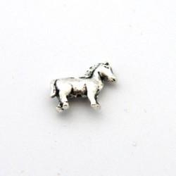 Mellandel - hästen Molly